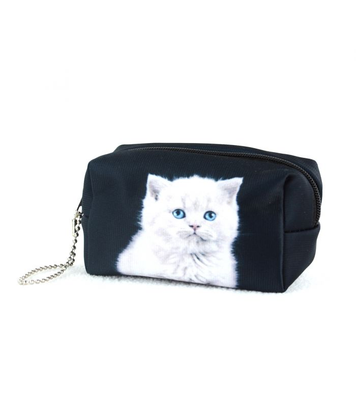 Bourse - Chaton British