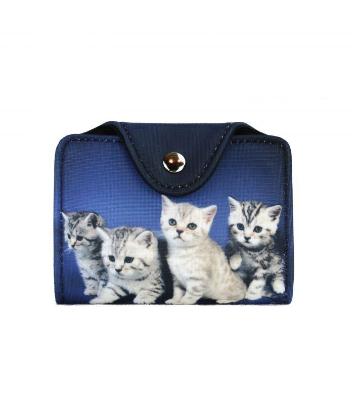 Porte-cartes - 4 chatons tigrés