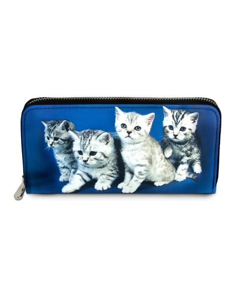 Compagnon avec zip - Les 4 chatons tigrés