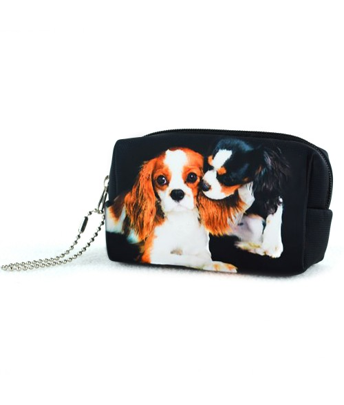 Bourse - Les 2 Cavalier King Charles